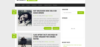 GreenChilli WordPress Theme Free Download